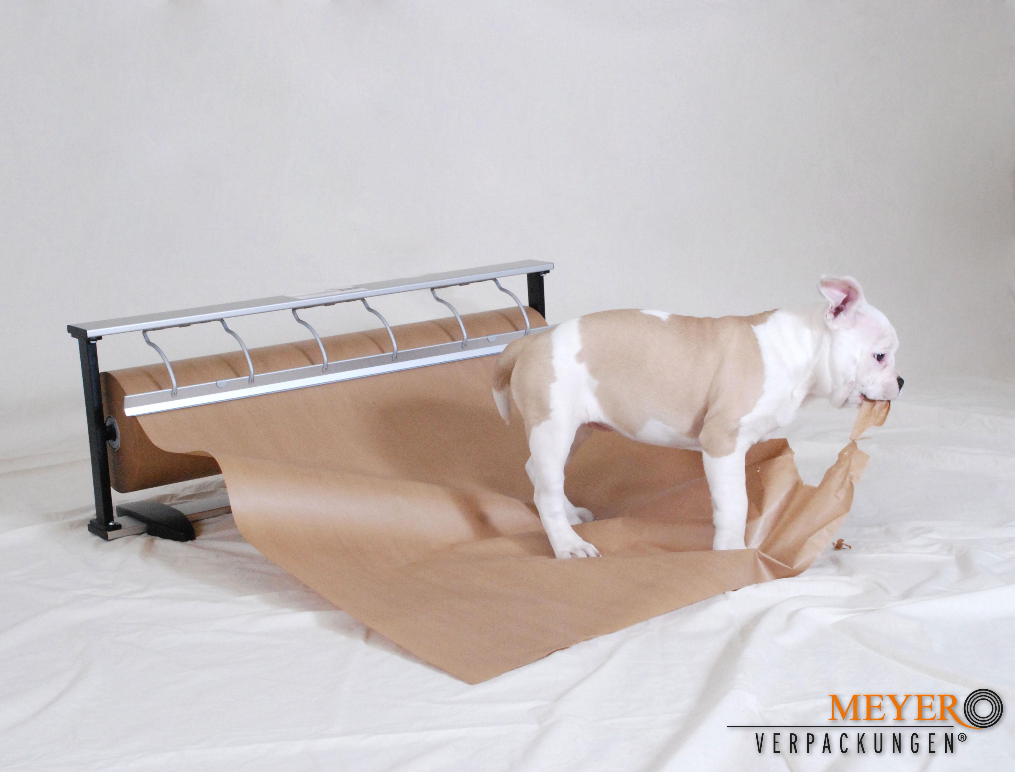 Hund mit kraftpapier braun